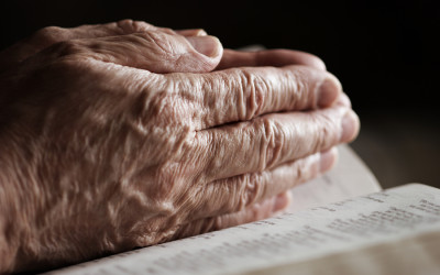 Trinity Care for Seniors Group Being Explored