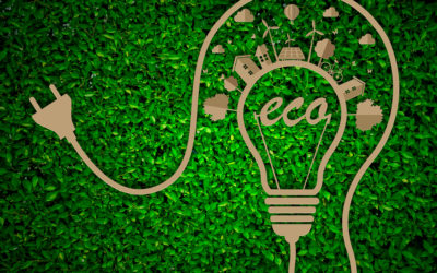 Committed to Going Green at TLC