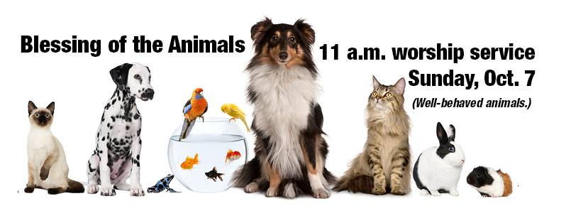 Blessing of the Animals at the 11 a.m. service on October 7